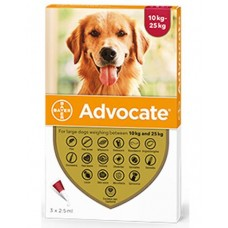 Advocate Flea and Worm Treatment for Large Dogs 10kg - 25kg