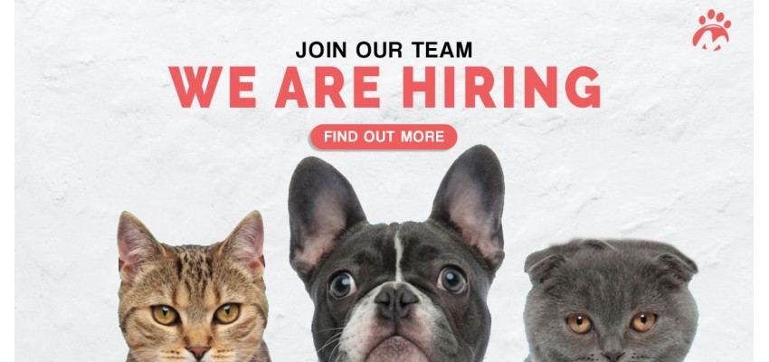Banner_We-Are-Hiring